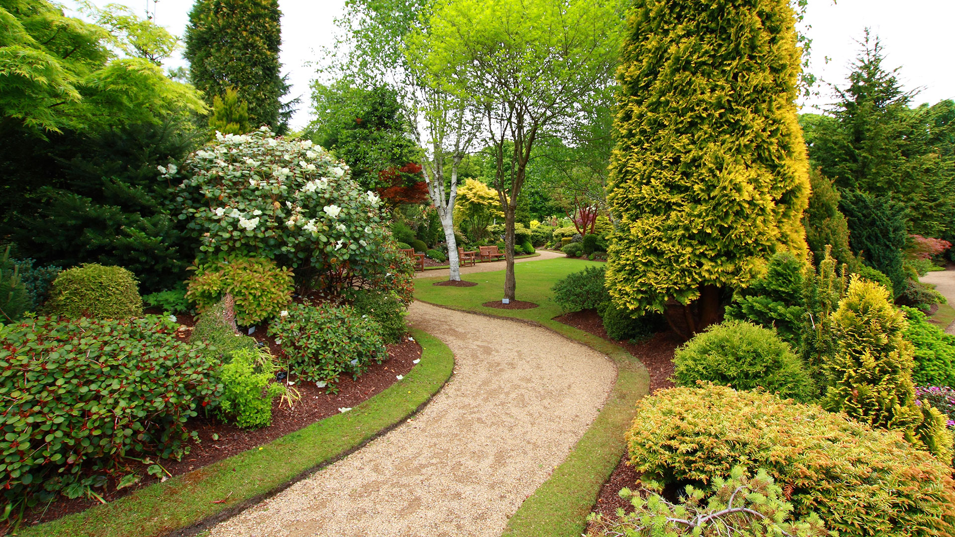 Golden landscaping landscape design installation and for Garden pictures